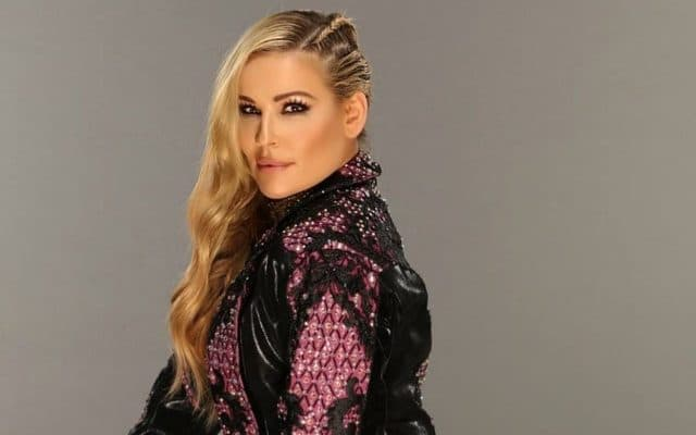WWE Money in the Bank Natalya