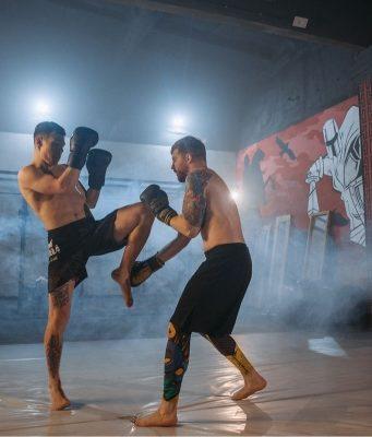 UFC Marvn Vettori